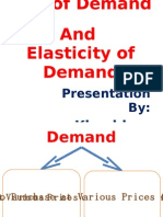 Demand N Elasticity