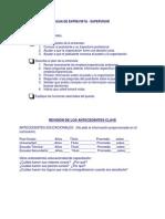 Guía Entrevista  - Supervisores