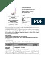 Programa Auditoria Basica