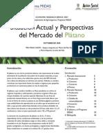 Mercado_Situacion_Actual_y_Perspectivas_PLATANO.pdf