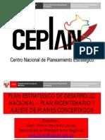 2013 Centro Nacional Planeamiento Estrategico