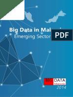 Big Data Malaysia Emerging Sector Profile 2014