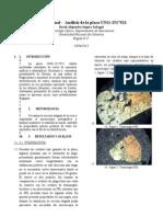 Informe básico de mineralogía óptica, roca mafica