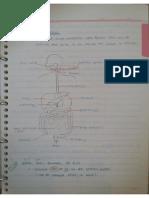 3.0 Digestion Part A