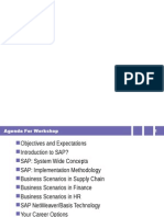 SAP Overview Workshop
