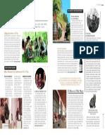 Revista Paula Aniversario 2015
