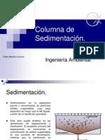 columna de sedimentacion.pdf