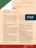 rglan.pdf