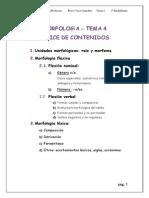 Tema 4. Morfología definitivo. pdf.pdf