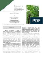 Ecologia de La Polinización