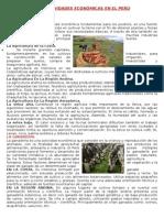Las Actividades Económicas en El Perú