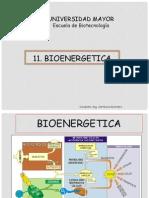 11. BIOENERGETICA