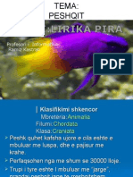 Lirika Pira
