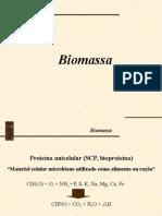 biomassa1