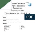 CATA..docx