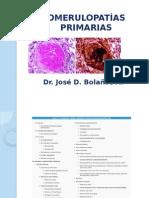 Glomerulares