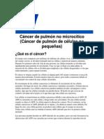 Cancer Pulmon No Microcitico
