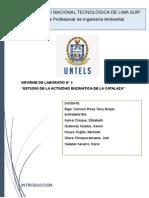 ESTUDIO DE LA ACTIVIDAD ENZIMÁTICA DE LA CATALAZA