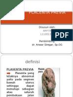 PEPER PP