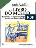 O Livro Do Músico