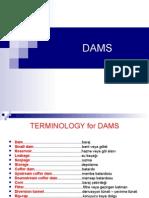 DAMS1(1)