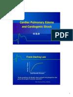 Kardiogenik Shock Due to Alo