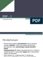 01-erp-01