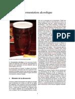 Fermentation Alcoolique