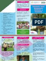 2015 Brochure Promotoria 2011