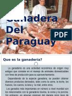 Producción Ganadera.pptx