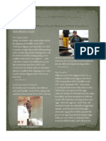 Newsletter 12 09
