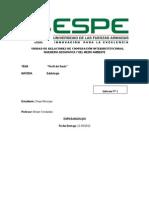 Perfil del Suelo Informe.docx