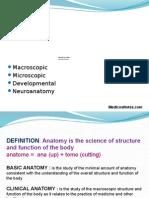 Anatomical Terms MedicosNotes.com