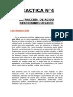 PRACTICA N°4:EXTRACCIÓN DE ACIDO DESOXIRIBONUCLEICO