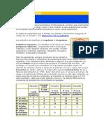 Cuerpos geométricos.doc