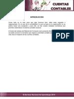 introducción cuentas contables