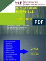 02-Lab-Patologia-Lesion-Reversible.ppt