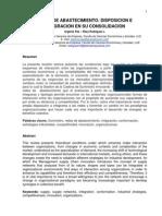 Redes de Abastecimiento - Disposicion e Integracion en Su Consolidacion