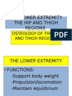 Osteology of the Lower Extremity