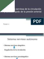 Regulación Nerviosa de La Circulación