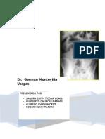 instrucciones para el uso de próstata buracchi gabriele de