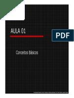 AULA 01_Conceitos Básicos.unlocked