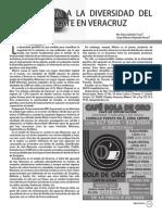 Una mirada a la diversidad del aguacate en Veracruz