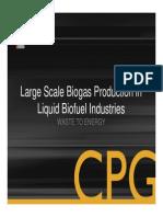 Large Scale Biogas Production Thiele2011