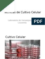 Técnicas de cultivo celular