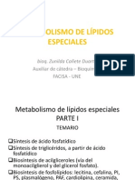 Metabolismo de Lípidos Especiales