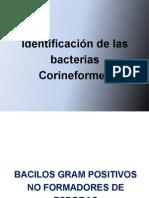 Identificacion de Las Bacterias Corineformes