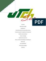 Caracteriacion Por Ultrasonido