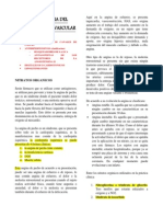 Farmacologia Del Aparato Cardiovascular