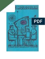 Café molecular (contos de FC).doc